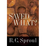 Saved From What? by R.C. Sproul (Paperback)