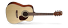Cort Earth 60 Acoustic Guitar Pack