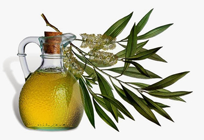 oliveoil400.jpg