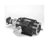 Y978 BlueMax 2000 VectorDuty 2000:1 Constant Torque 1 HP