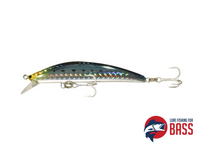 Tackle House Seabass College 105SF Sardine