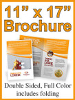"Brochures - 11"" X 17"" 60lb white Double Sided Color  - From $78"
