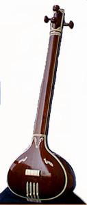 Tanpura #304