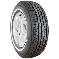 Mastercraft 205/75R15 WSW AS IV