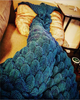 Mermaid tail blanket G - palaceofchic