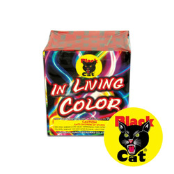 Black Cat In Living Color
