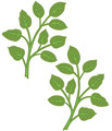 Sue Wilson Finishing Touches Orange Blossom Leaves Die  CED1447 - Pre-Order 15% Off