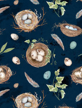 Large Nests & Eggs on Navy