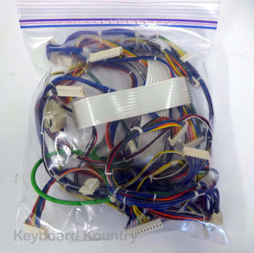 Roland S-50 Complete Wire/Cable Harness