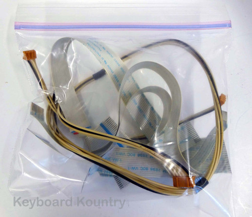 Roland RD-600 Cable/Wire Harness