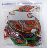 Complete Wiring Harness for Korg Trinity