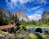 El Capitan View In Yosemite Nation Park Photograph