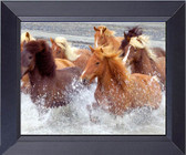 Wild Mustang Horse Crossing The Rio Grand In Lonesome Dove Texas Framed Art Photograph Print