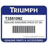 Golilla Aluminio Cambio de Aceite Triumph (T3551092)
