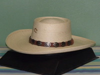 Charlie 1 Horse High Desert Palm Plantation Hat
