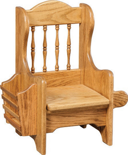 Child's Potty Chair