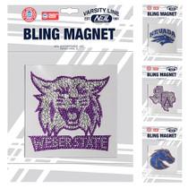 Bling Magnet