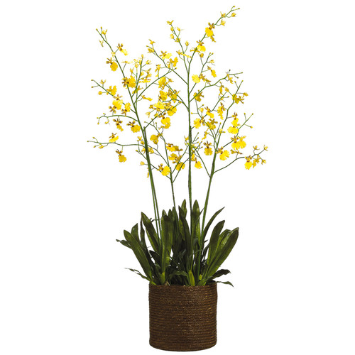 "Oncidium Orchid in Basket 58"""