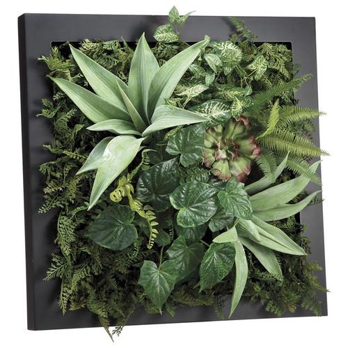 """Agave Fern Succulent Wall Garden 24"""""""