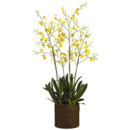 Oncidium Orchid in Basket 58""