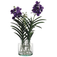Vanda Orchid in Glass Vase