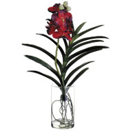 Red Vanda Orchid in Glass Vase