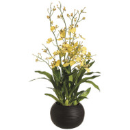Oncidium Orchid in Sphere Vase 38""
