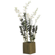 Dendrobium Orchid in Basket 68""