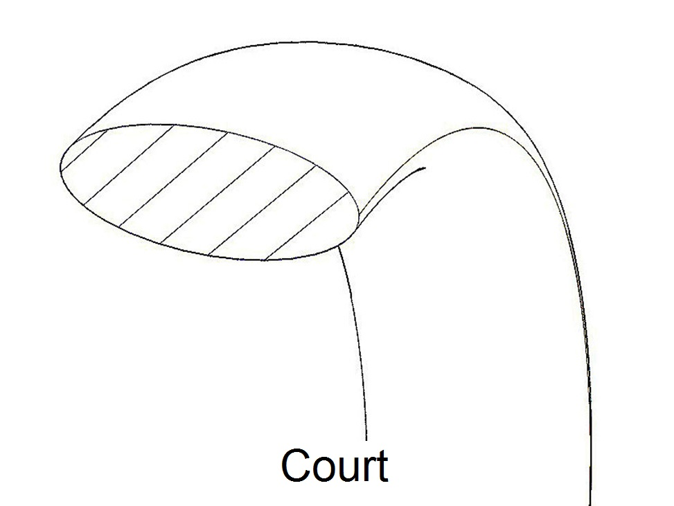 court-profile.jpg