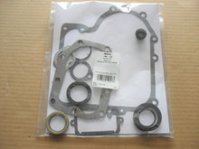 Engine Gasket Set with Oil Seals for Briggs and Stratton 10 HP to 13 HP 494241, 490525 &