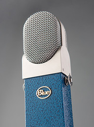 Blue Blueberry - Up Close - www.AtlasProAudio.com