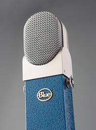 Blue Blueberry - Up Close - www.AtlasProAudio.com