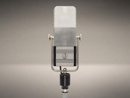 R44CE Cost Effective Ribbon Microphone