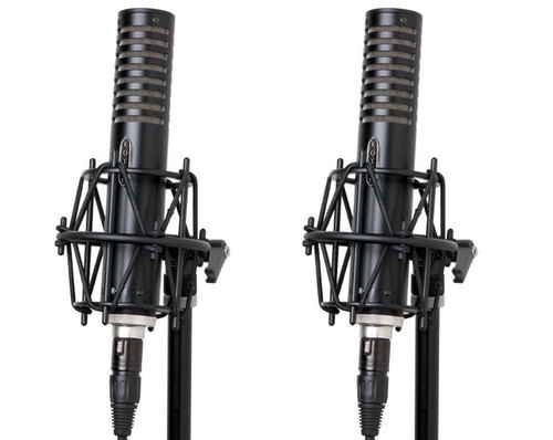 A Pair of Royer R-101 Microphones - www.AtlasProAudio.com