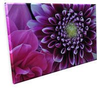 Purple Floral Gallery Wrapped Canvas FLS16831060 18 x 24 OD