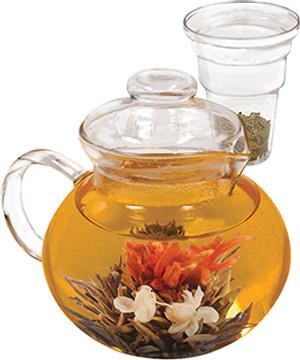 Primula tea Borosilicate Glass Tea Pot