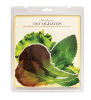 Deco Leaves - Herbs - Lettuce 20pcs