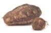 Fresh Arbi/Edo/taro root 5lb-Indian-thai/indian vegetable,USA
