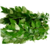 Fresh Curry Leaves(1oz)- Indian herb,indian vegetable,USA
