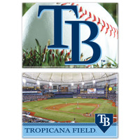 Tampa Bay Rays 2-Pack Rectangle Magnet