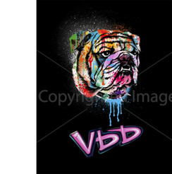 VDD Exclusive Bulldog Splatter