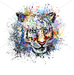 VDD Exclusive Tiger White Splatter