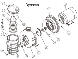 Pentair Dynamo Pump Parts