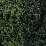 L168 Woodland Scenics Lichen Dark Green Mix 3 Quarts