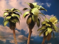 """295-T26 Grand Central Gems 3-Small Palm Trees (2""""-3"""")"""