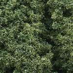 FC58 Woodland Scenics Medium Green Foliage Clusters