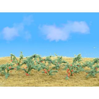 "95526 O Scale JTT Scenery Tomato Plants 1 1/2"" Tall, 12/pk"