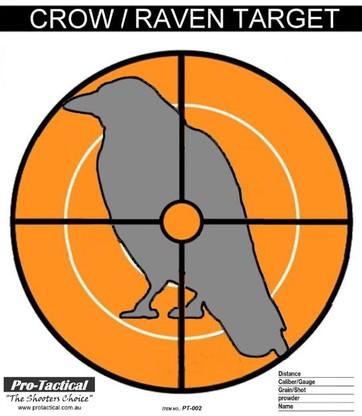crow raven paper shooting target