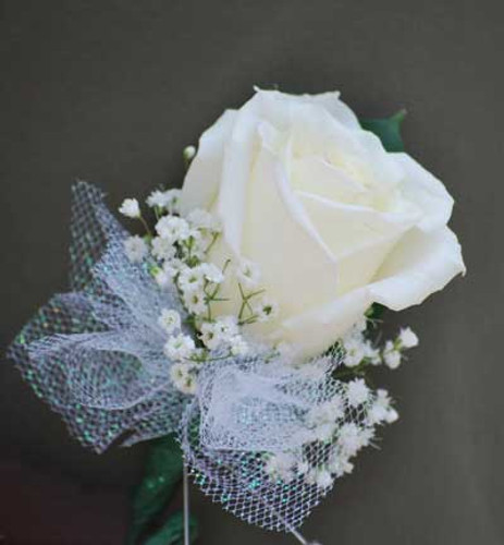 Rose with Tulle