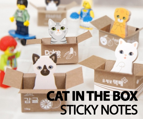 CAT IN THE BOX STICKY NOTES